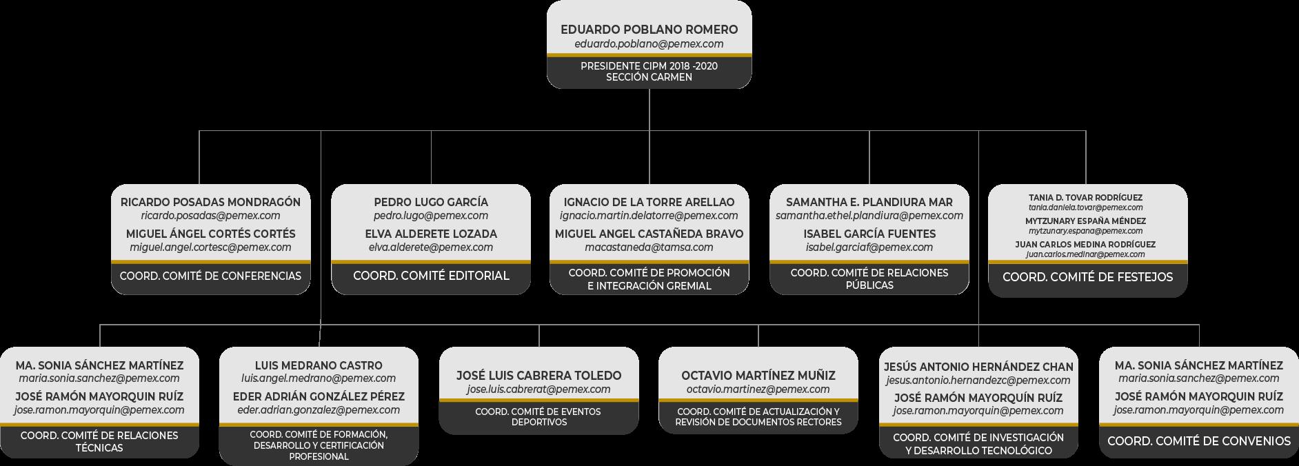 Coordinadores Comisiones CIPM Carmen 2018-2020